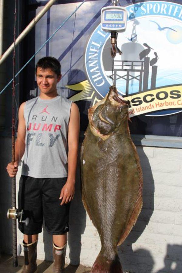 Mirage Sportfishing California Halibut World Record
